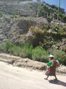 15.paysage bolivien