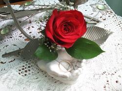 Roses_A LA UNE